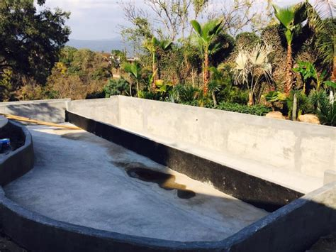 Natural Swimming Pools: Step by Step How to Build Guide