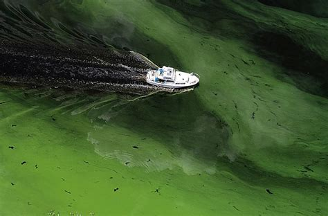 The Dangers of Water Pollution - Generations will bear the