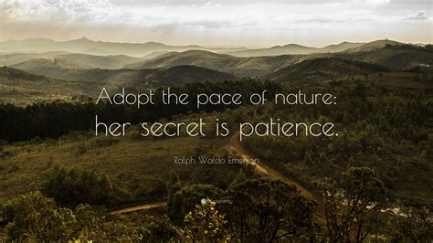 Quotes about Nature emerson (41 quotes)