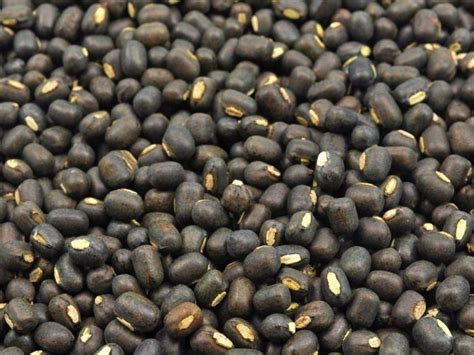 Nutritional Value of Chickpeas and Black Gram | Organic Facts