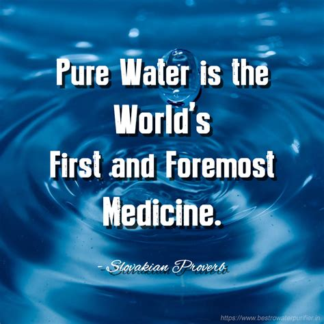 Save Water Quotes & Slogans - Best Quotes about Importance