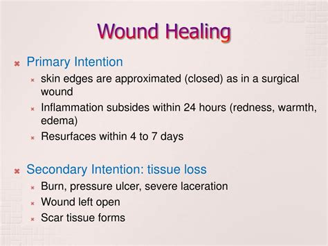 PPT - Wound Dressing & Artificial Skin PowerPoint