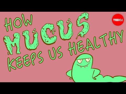 Mucus In Stool: Why It Happens And What Does It Mean