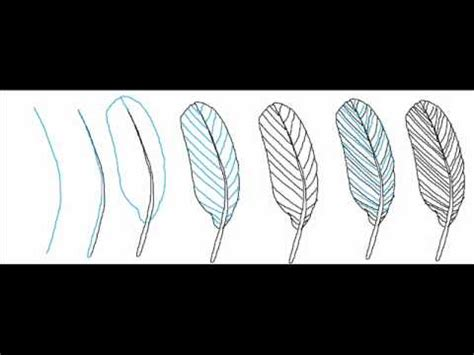 How To Draw A Simple Feather Step By Step Drawing Tutorial