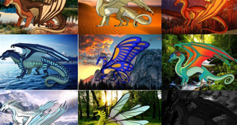 What Wings Of Fire Race Should You Identify As?