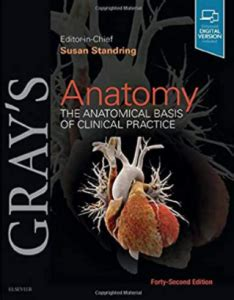 download gray's clinical anatomy Archives - Medical