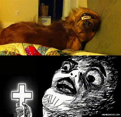 Call The Exorcist My Dog ta Possessed by recyclebin - Meme