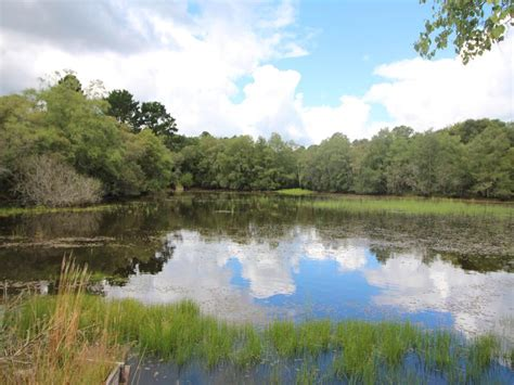 Lake for sale in GUISCRIFF - Morbihan - Fishing Lakes with