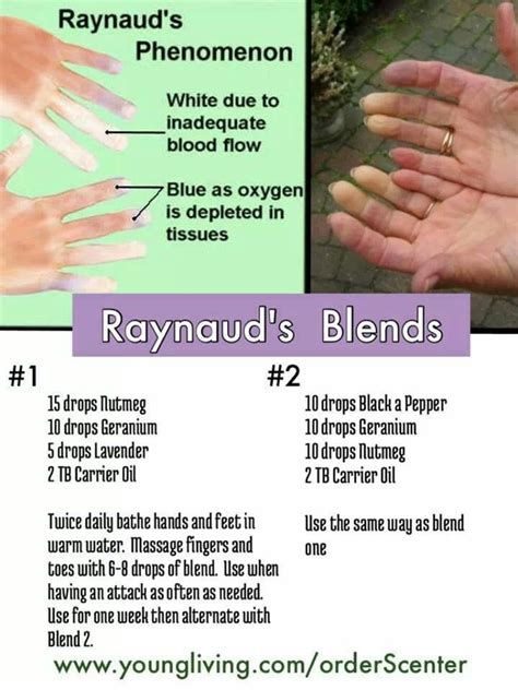 EO Blends for Raynaud's Phenomenom   Young Living Oil